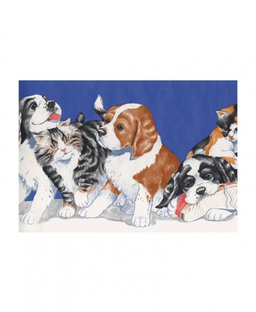 Cats And Dogs Border JJ6676