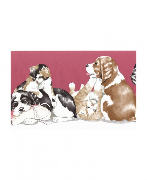 Cats And Dogs Border JJ6683