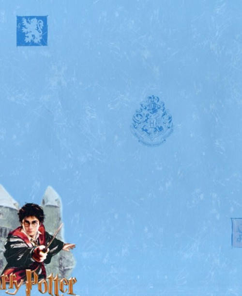 S & A SUPPLIES Stocked Wallpaper Harry Potter
