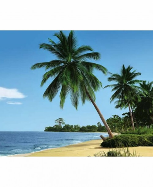 Palm Tree by Komar 4-074 Wall Mural