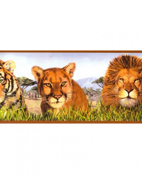Big Cat Border 9416-19